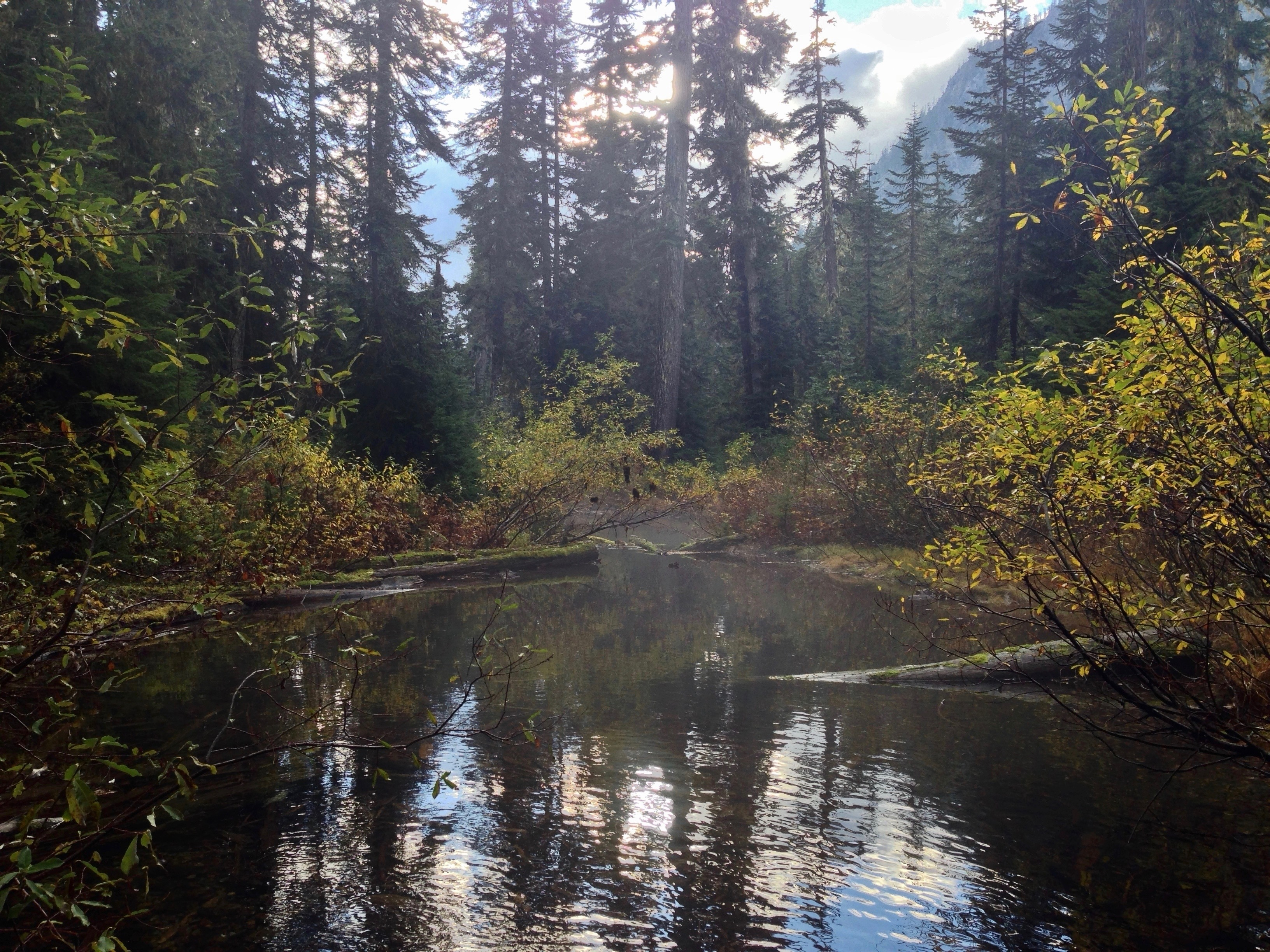 Mist rises from a quiet backwater on Commonwealth Creek. Commonwealth Basin – Red Pass Trail, October 19, 2014.