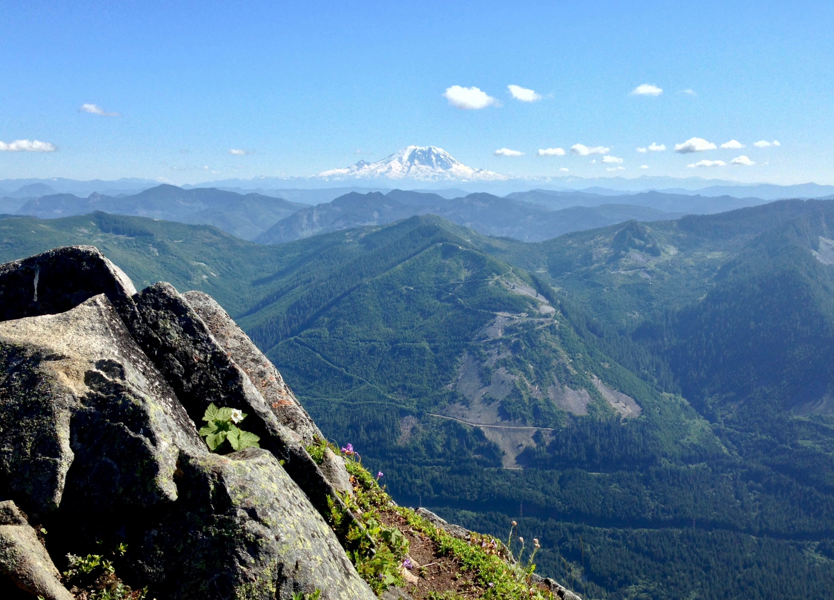 In the panorama sweeping from Bandera Mountain's summit, Mt. Rainier crowns the southern horizon. Bandera Mountain Trail, July 09, 2014.