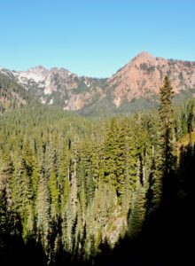 Above Commonwealth Basin's broad woodland, the trail's formal destination, Red Pass, is visible as the cleft between Lundin Peak on the west (left in this photo) and the aptly named Red Mountain on the east (right). A bootpath continues west from the pass to the lowest of Lundin Peak's three craggy points. Pacific Crest Trail, Section J, October 29, 2017.