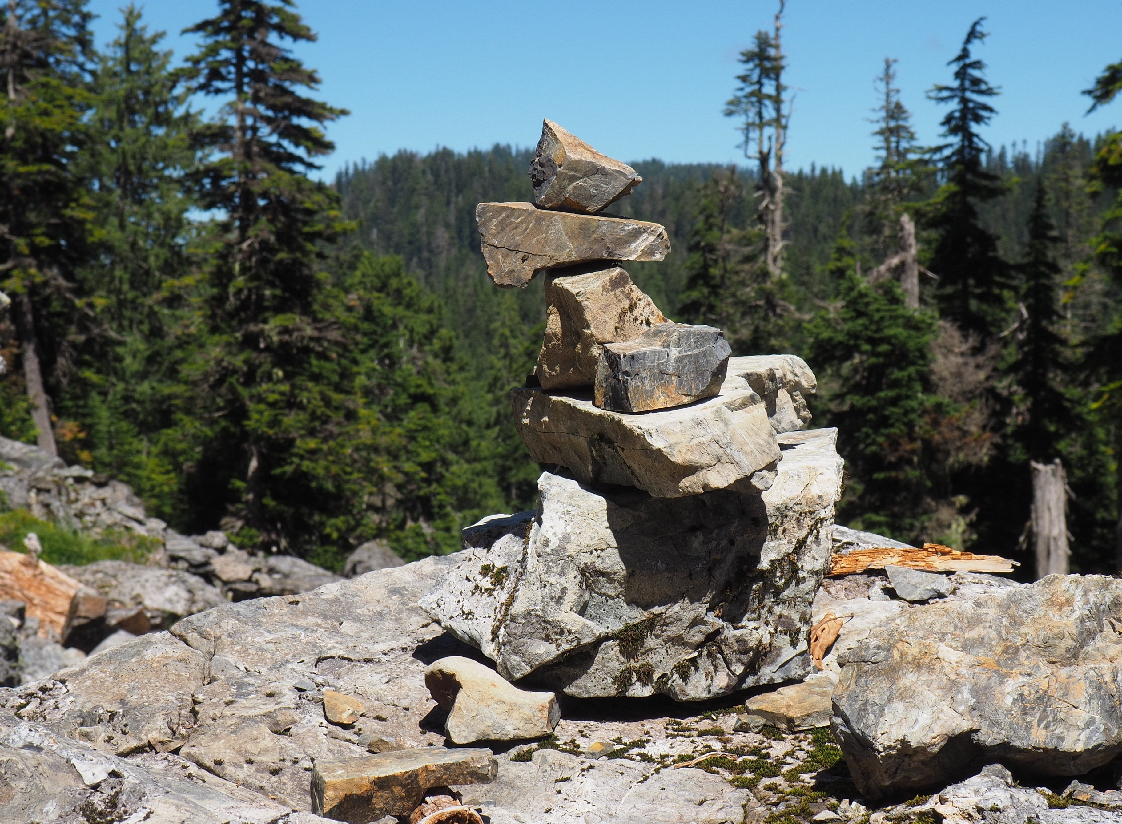 Just beyond the midsection meadow, the trail encounters two large boulderfields where the path is easily lost among the stones. Look for small cairns built by earlier hikers to guide the way. Walt Bailey Trail, July 24, 2016.