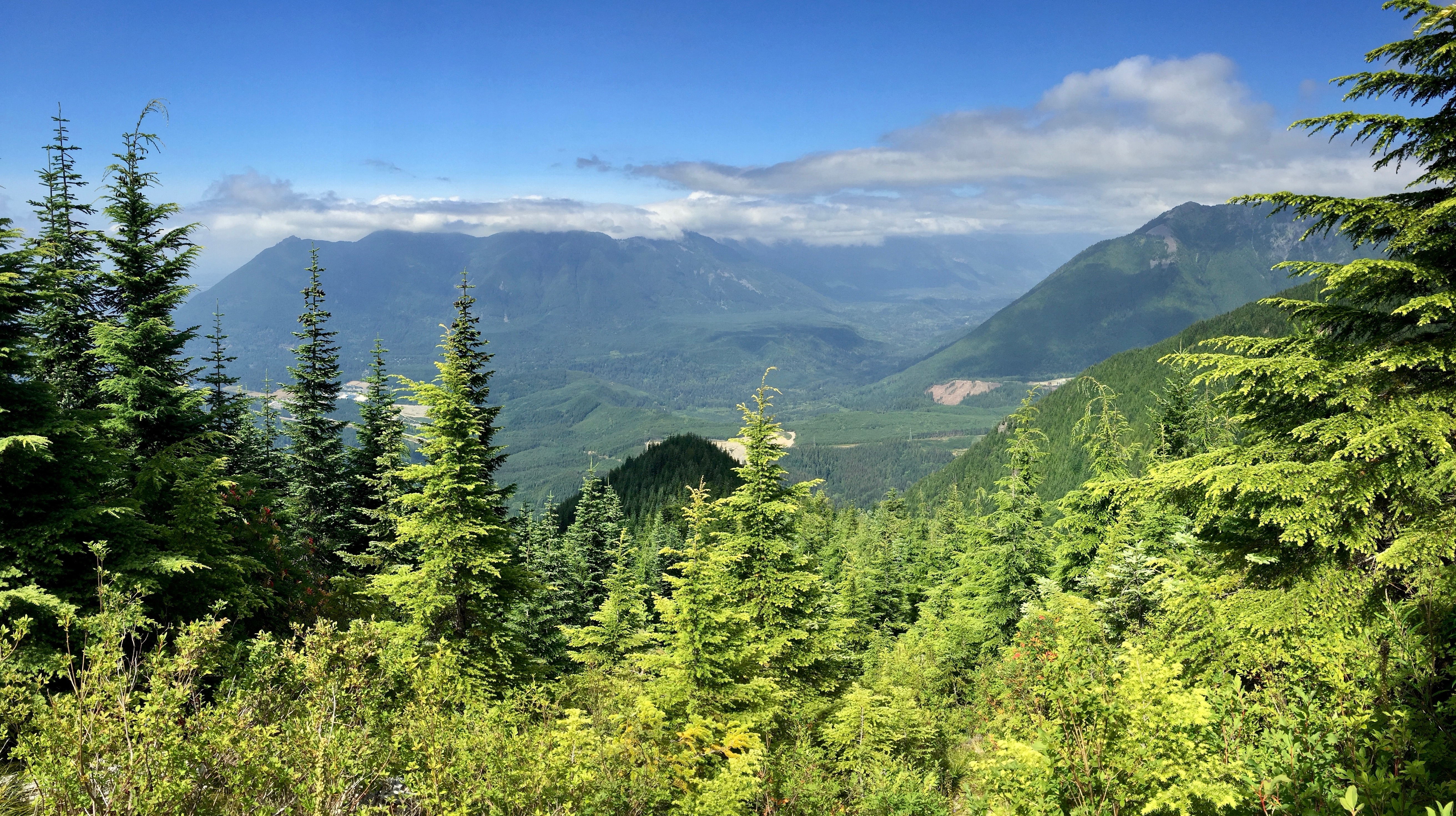 Mount Washington's northern view scans the ridge comprising Mount Si, Mount Teneriffe, and Green Mountain (here, in the left and center background) and Mail Box Peak rising at the juncture of the South and Middle Fork Snoqualmie river valleys (here, in the right middleground). Mount Washington Trail, July 30, 2016.