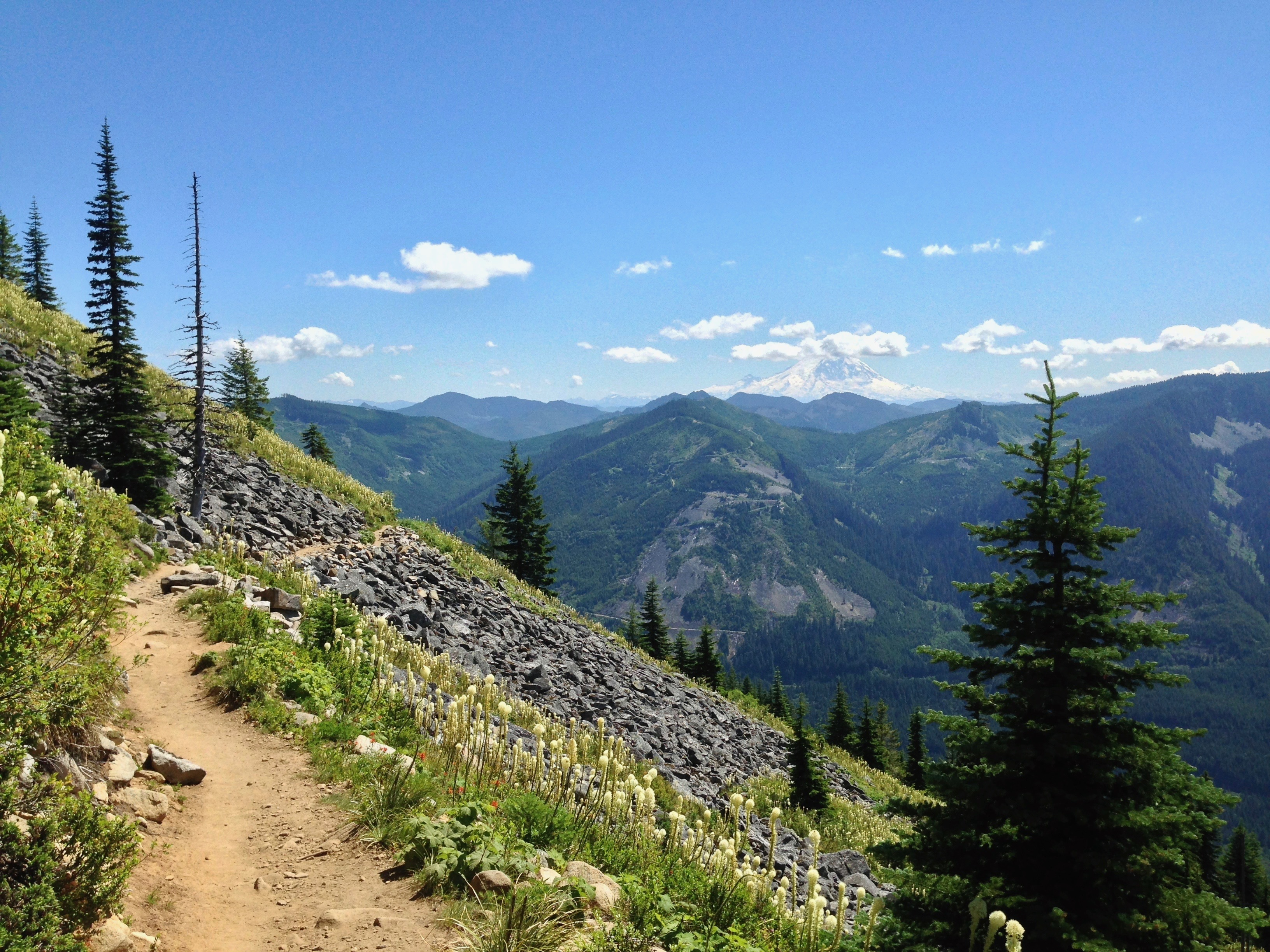 Above the treeline, the trail flattens as it continues across Bandera Mountain's open flank, where a backward glance affords a picturesque glimpse of Mt. Rainier rising to the southeast. Ira Spring Trail, July 09, 2014.